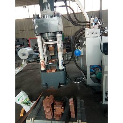 Y上海全自动铜屑压块机高效快捷 经久耐用